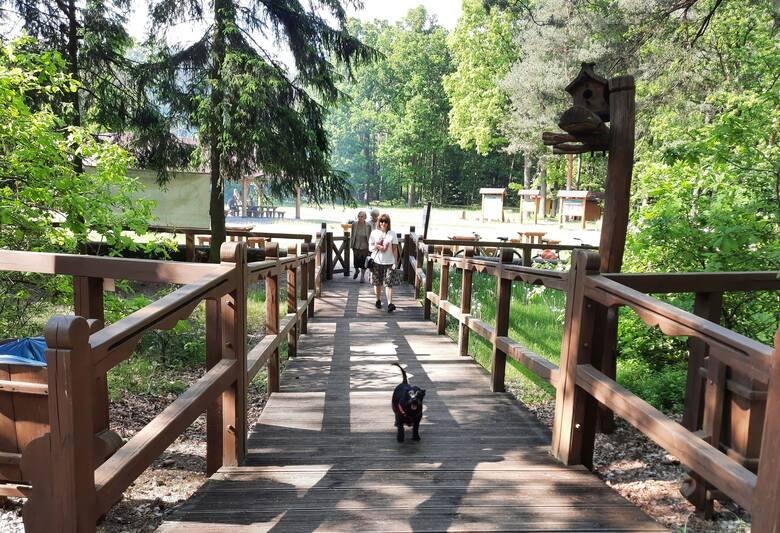 Wielu turystów korzystając z długiego czerwcowego weekendu odwiedziło w sobotę Królewskie Źródła na terenie Nadleśnictwie Kozienice. Mimo zamknięcia