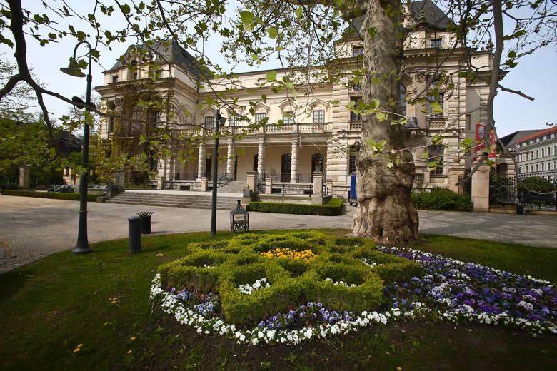Wiosnę formalnie już przywitaliśmy, teraz czekamy na jej pierwsze oznaki. Gdzie we Wrocławiu najlepiej oglądać i przywitać prawdziwą wiosnę i po czym