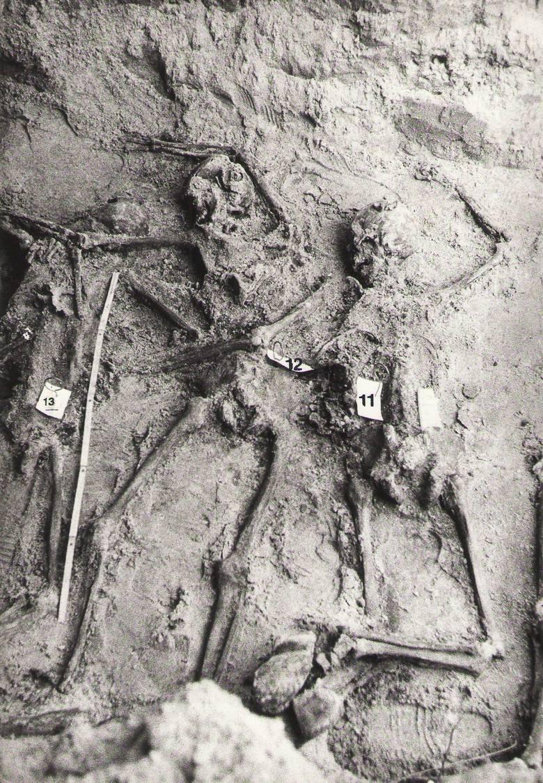 Szczątki obrońców poczty znalezione w grobie przy al. Jana Pawła II na gdańskiej Zaspie