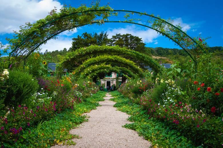 Kwitnące kwiaty, piękne, zielone trawniki - tak prezentują się latem ogrody naszych Czytelników. A jak wyglądają Wasze ogródki? Czekamy na zdjęcia za