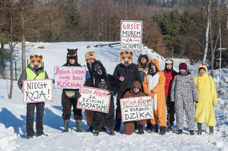 Aktywiści ze Zwierzęcego Ruchu Oporu w nietypowy sposób upomnieli się o prawa dzików i innych stworzeń do życia.- Zarówno polscy aktywiści (m.in. łoś,