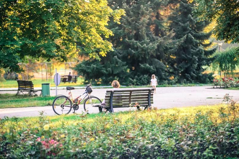 Stosunkowo cicho, jak na centrum aglomeracji, jest w Parku Śląskim. Warto tu przyjść, aby odpocząć od hałasu miasta.Zobacz kolejne zdjęcia. Przesuwaj