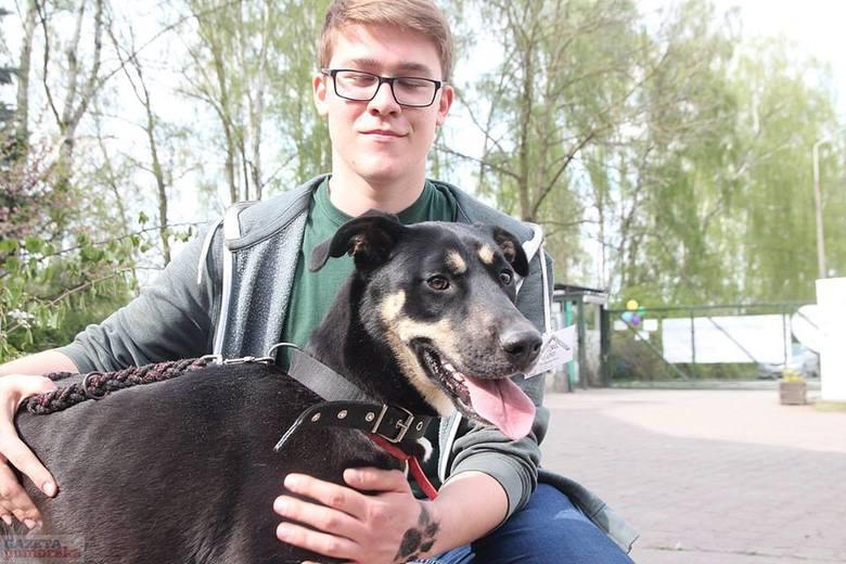 Podstawową zmianą są wizyty poadopcyjnych. Każdy adoptowany czworonóg po 2-3 tygodniach od załatwienia formalności jest odwiedzany przez wolontariuszy, którzy sprawdzają w jakich warunkach żyje adoptowany psiak lub kot.