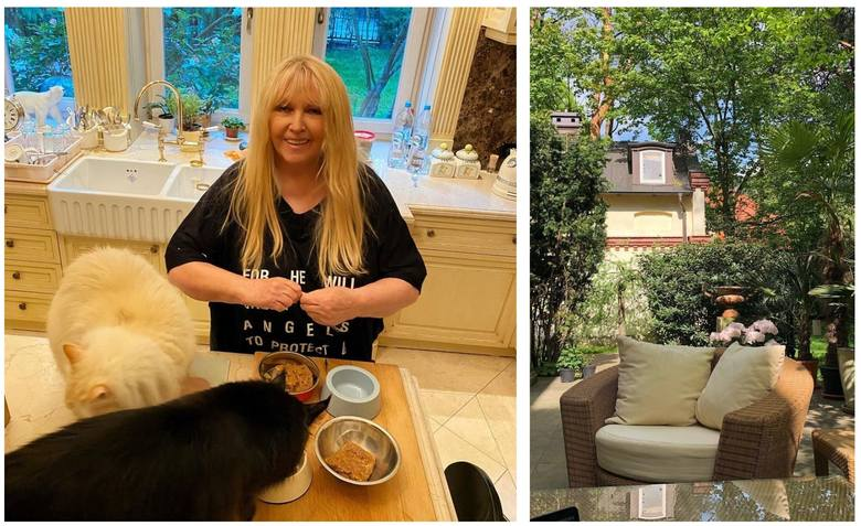 Tak mieszka Maryla Rodowicz. Złote lustra, piękny ogród i koty - zaglądamy do posiadłości w Konstancinie-Jeziornej. Diva polskiej muzyki rozrywkowej