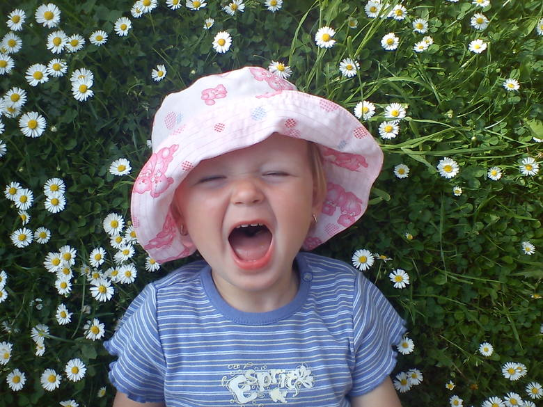 Wiosna! W domu i ogrodzie