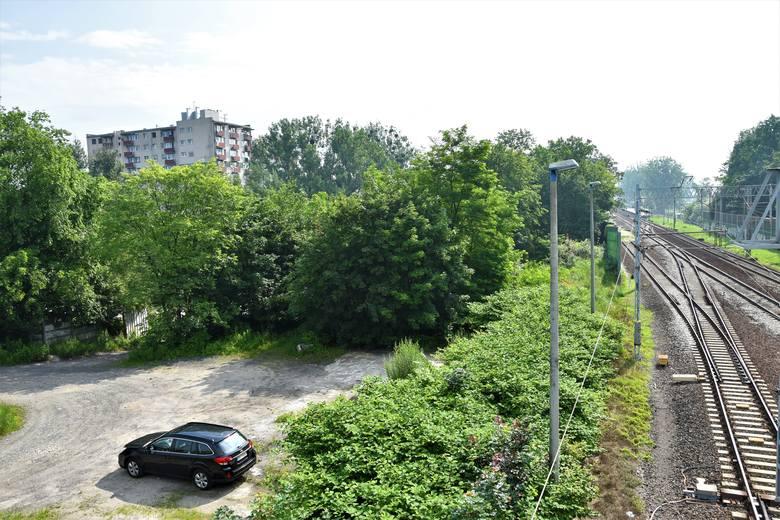 Centrum przesiadkowe Opole Zachodnie. Miasto ogłosiło przetarg na realizację inwestycji, po topór pójdzie kilkaset drzew