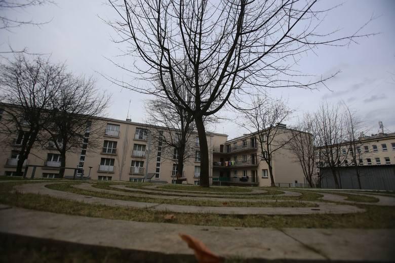 """Alejki, ławki... Ale to przecież jeden wielki plac zabaw. Tak wygląda podwórko u zbiegu Adamskiego i Koszarowej w Katowicach<br /> <br /> <iframe src=""""//get.x-link.pl/96b9082c-3f0c-00b3-938e-b77bf6e14241,e1240784-19b8-8f22-ff8d-00416ec86eac,embed.html"""" width=""""640"""" height=""""360"""" frameborder=""""0""""..."""