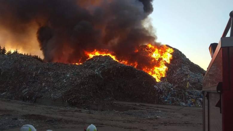 To kolejny pożar w sortowni w Studziankach