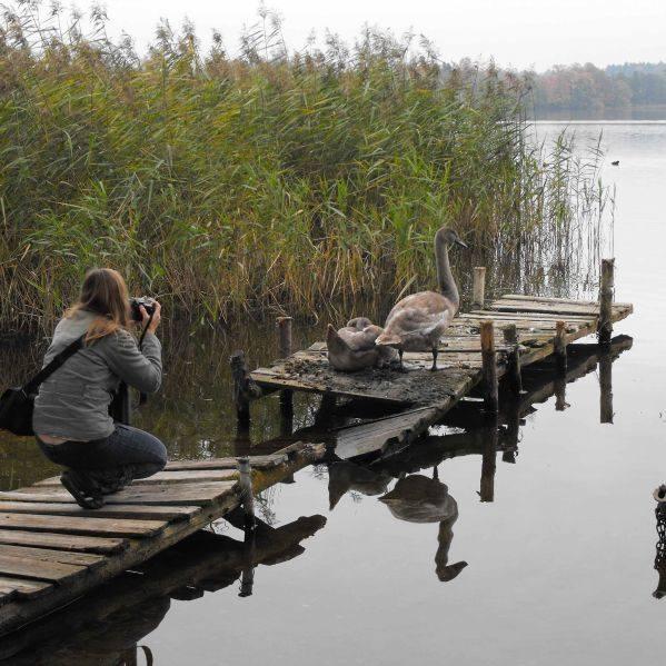 Podglądaliśmy ptaki pod Elkiem. Naliczyliśmy ich az 136 z 33 gatunków
