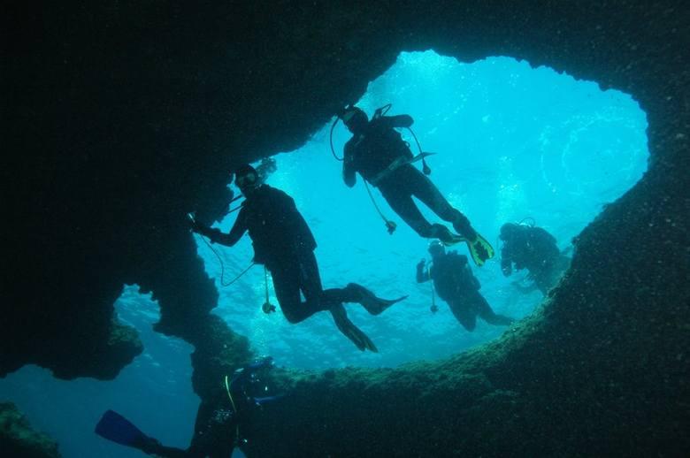 Nurkują i podziwiają niezwykły podwodny świat