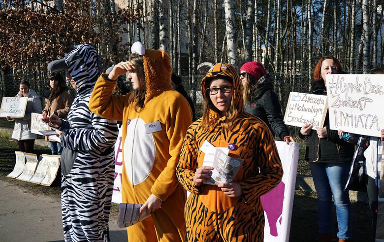 """""""Nie róbcie cyrku ze zwierząt"""". Protest pod cyrkiem Korona [ZDJĘCIA]"""