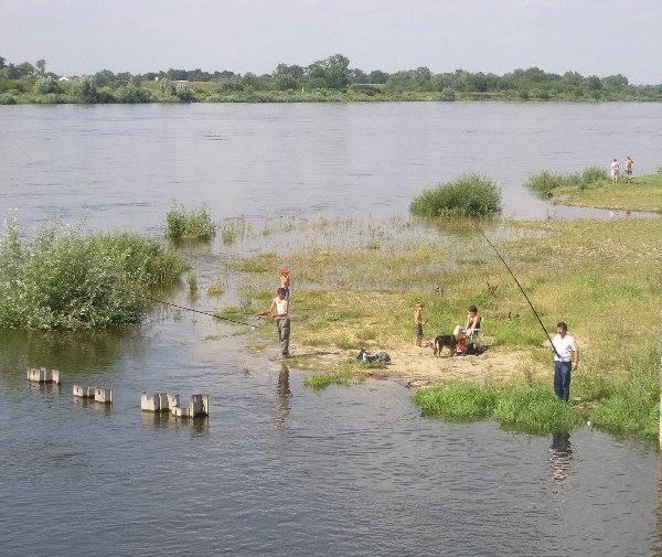 Wykorzystując wysoki stan wody w Wiśle  mieszkańcy okazali mnóstwo nierozwagi. Wielu  z nich uważa, że jest to doskonała okazja do  kąpieli wodnych,