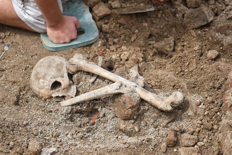 W centrum Poznania odkryto masowy grób. Znaleźli go archeolodzy pracujący na placu Kolegiackim. Mogło tu być pochowanych nawet kilkuset zmarłych.Przejdź