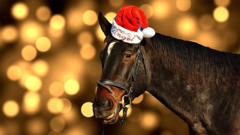 Wesołe i śmieszne życzenia bożonarodzeniowe 2020. Wyślij kartkę na święta z zabawnymi życzeniami na Wigilię i Boże Narodzenie. Gotowe do wysłania wesołe