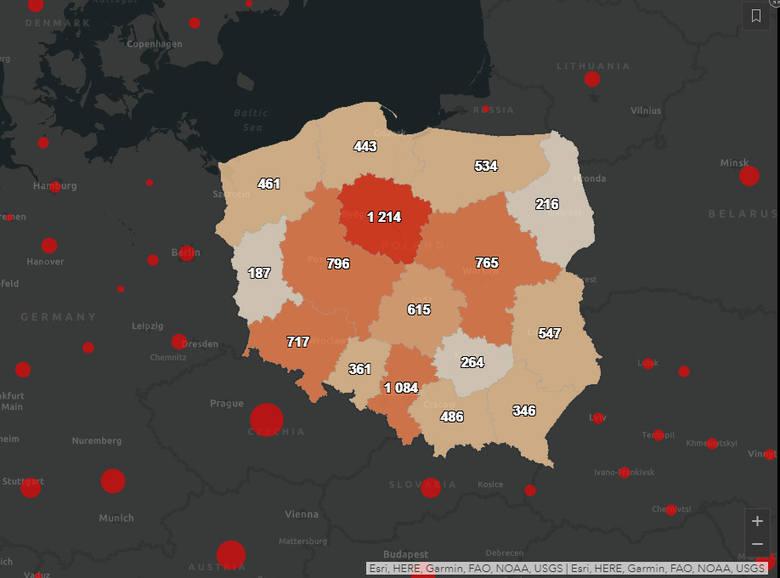 Mapa koronawirusa w Polsce. Liczba potwierdzonych zakażeń na dzień w województwach (stan na 1.12.2020)