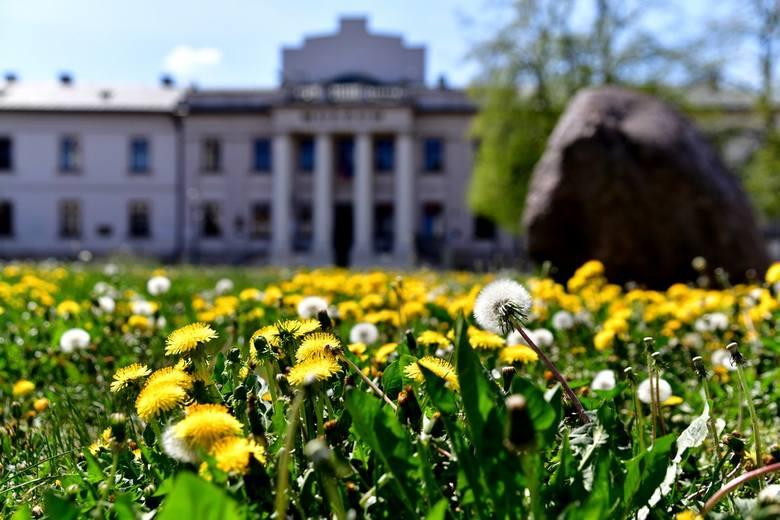 Wiosna zagościła w radomskich parkach. Zobacz zdjęcia!