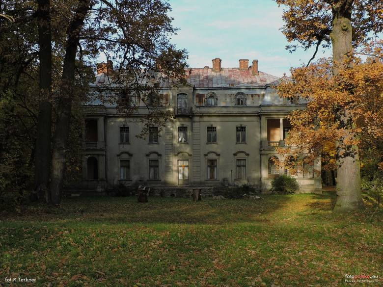 Pałac w Borkowicach został wybudowany na początku XX stulecia, otoczony parkiem angielskim. Majątek wsi Borkowice odziedziczyła po rodzicach Maria Karolina