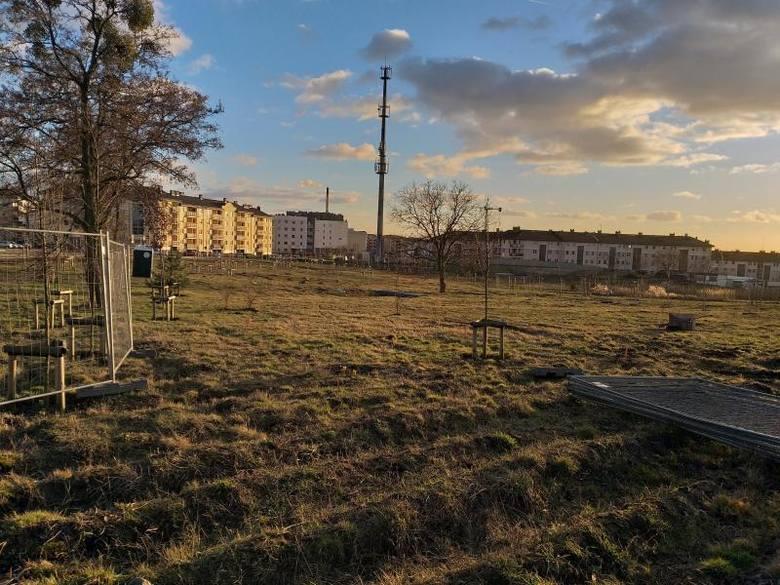 Jeszcze niedawno tak wyglądał teren, na którym obecnie budowany jest skatepark