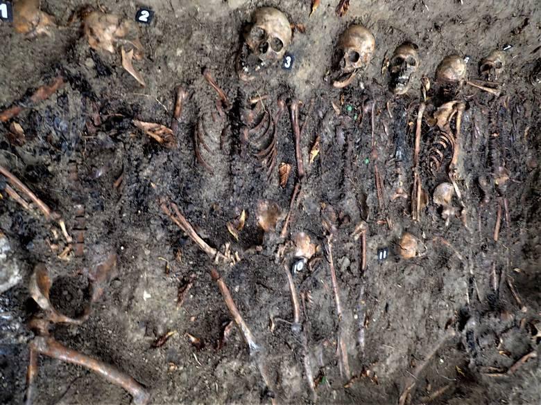 W czwartek, 5 października, w Kargowej, na obrzeżu dawnego cmentarza poewangelickiego, prace ekshumacyjne prowadziło stowarzyszenie Pomost.- Sygnał otrzymaliśmy