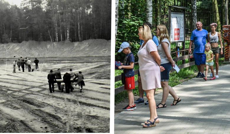 Decyzję o budowie zoo w Bydgoszczy podjęto w 1975 roku. Miało ono  specjalizować się w hodowli zwierząt rodzimych, polskich gatunków. Dlatego zoo nadano
