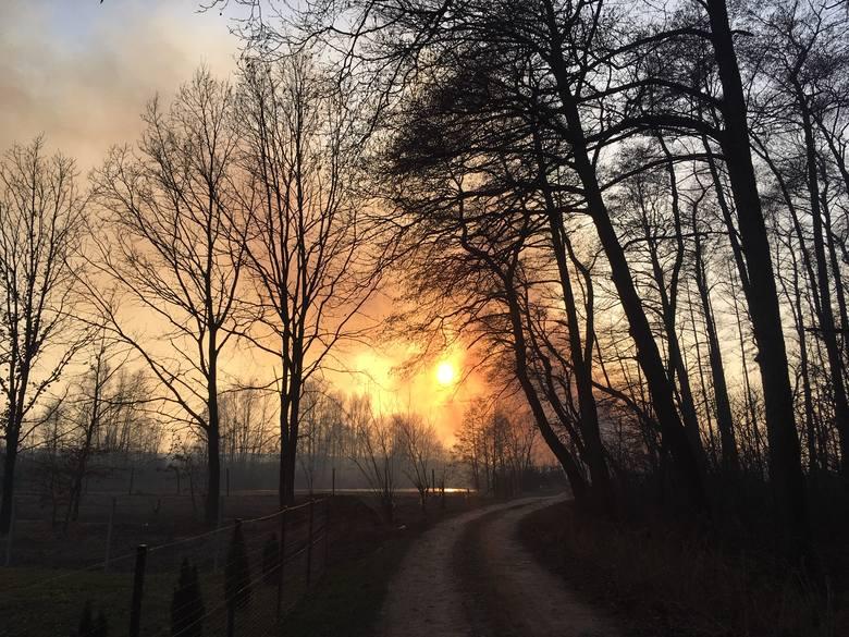 Palą się trawy w przysiółku Gęsiówka w Jasionce. Jest duży wiatr, ogień się szybko rozprzestrzenia - pisze nasz Czytelnik na alarm@nowiny24.pl. - Ogień