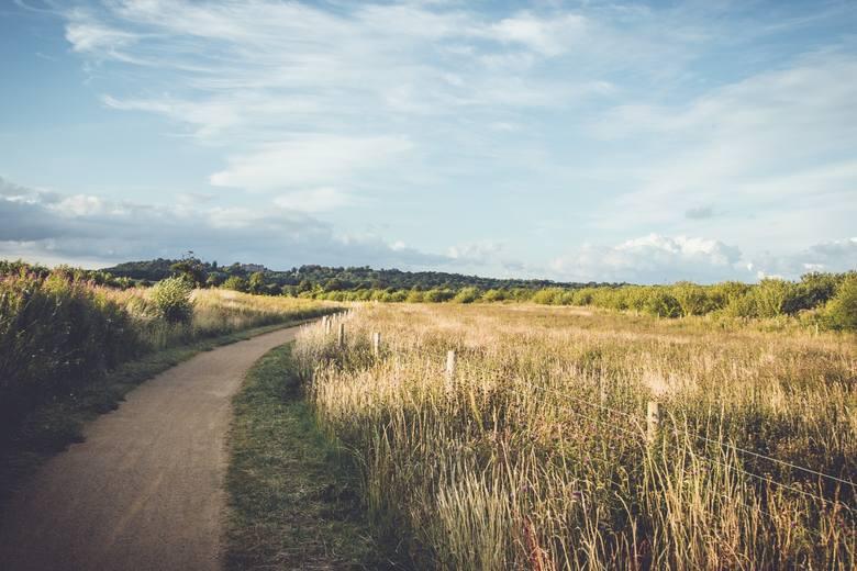 Z miesiąca na miesiąc coraz więcej jest osób zainteresowanych kupnem działki w największych miastach Polski. Ceny gruntów potrafią być jednak wysokie.