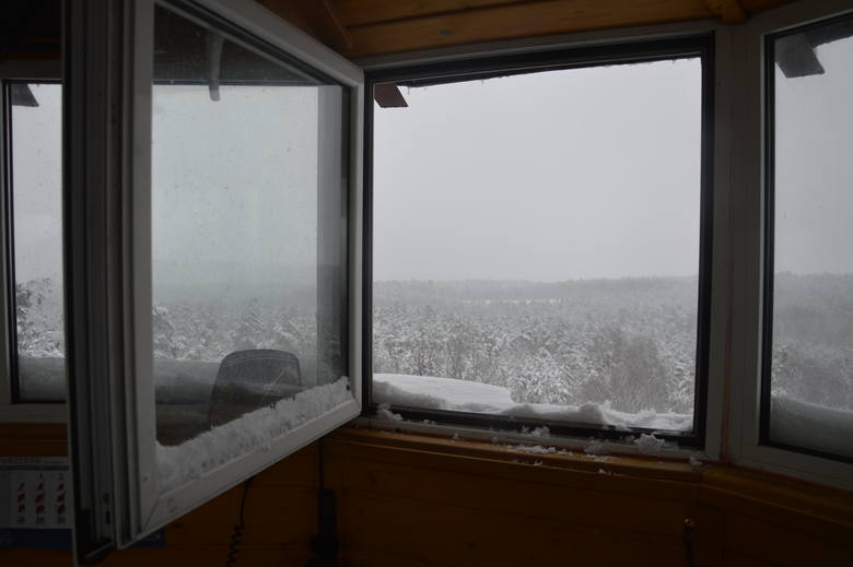 Zielona Góra. Widok niczym ze Śnieżki? Zobacz zdjęcia ze szczytu wieży Bismarcka!