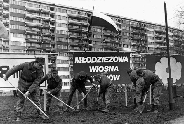 Wrocław. Żołnierze porządkowali osiedlowe skwery