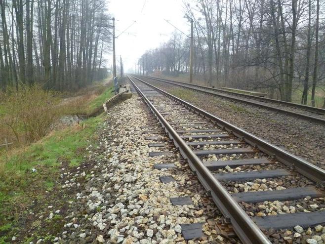 Informacje o zwłokach leżących na torowisku policja otrzymała od dwóch pracowników kolei