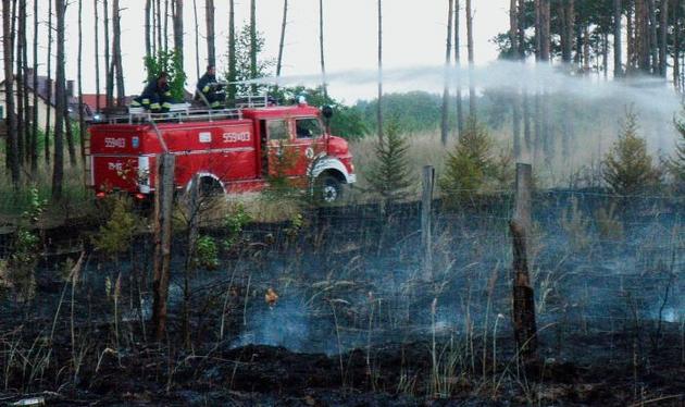 Pożar lasu w okolicach Koszyc pod Piłą gasiło  70 strażaków