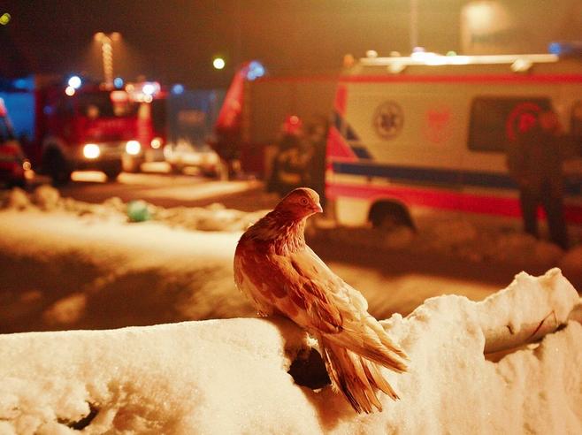 Bliscy ofiar zawalonej hali MTK wciąż czekają na osądzenie winnych
