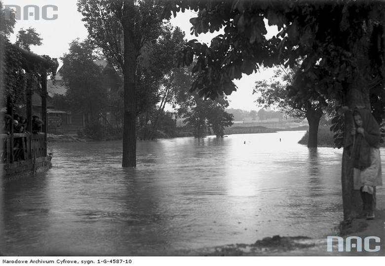 Fragment zalanych przedmieść Krakowa.<br /> http://audiovis.nac.gov.pl/obraz/94162/cfbe47804c54d9232169c2003327ddfa/