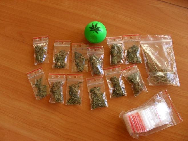 Wpadli dilerzy narkotyków [ZDJĘCIA]
