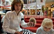 Światowy Dzień Zwierząt w Galerii Echo w Kielcach