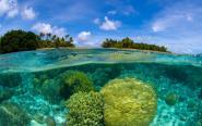 Pięć niezwykłych wysp z zakazem wstępu dla turystów [zdjęcia]