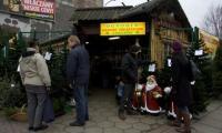 Prawdziwe choinki w Słupsku można kupić w wielu punktach miasta, np. przy niektórych marketach.