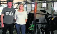 Elżbieta i Mariusz Bielscy z Zawad zrobili wszystko, by nie przekroczyć swojej kwoty mlecznej. Sprzedali część krów, a w ich miejsce kupili jałówki, które niedługo zaczną się wycielać.