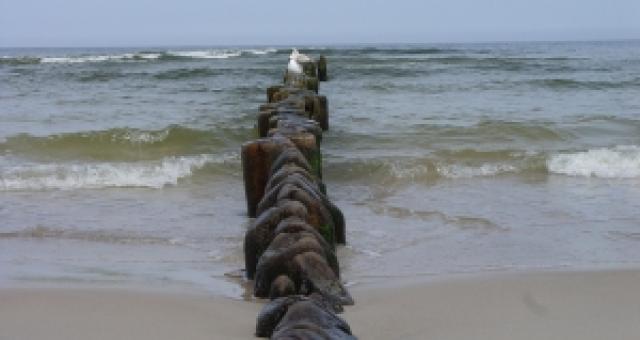 Plażę wydzierżawił Urząd Morski w Słupsku.