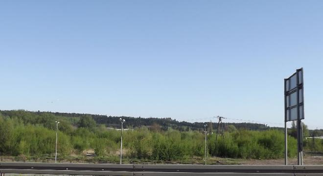 Tu gdzie dziś na ugorze dziko rosną krzewy, za dwa lata stanie ogromny hipermarket. (Monika Nosowicz-Kaczorowska)