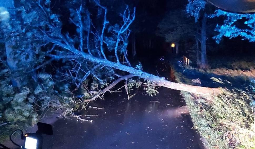 Film do artykułu: Silny wiatr na Pomorzu 14-15.10.2020 r. 4t0 interwencji straży pożarnej! Powalone drzewa i utrudnienia w ruchu drogowym