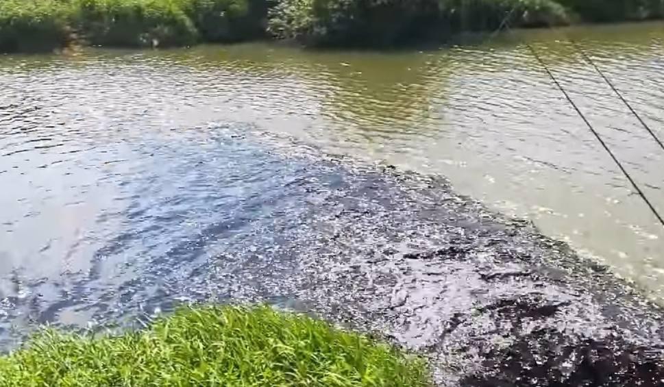 Film do artykułu: Czarna breja spuszczona do Wisły w Bieruniu. Próbek wody nie pobrano. Ale władze zapewniają, że woda nie jest została skażona. To nie ropa