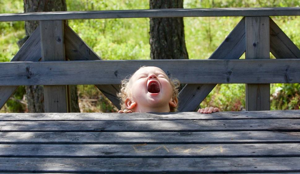 Film do artykułu: Dzieci wrzeszczą, biegają i chcą siku, a ja jestem starsza i chcę spokoju! - pisze do nas Czytelniczka