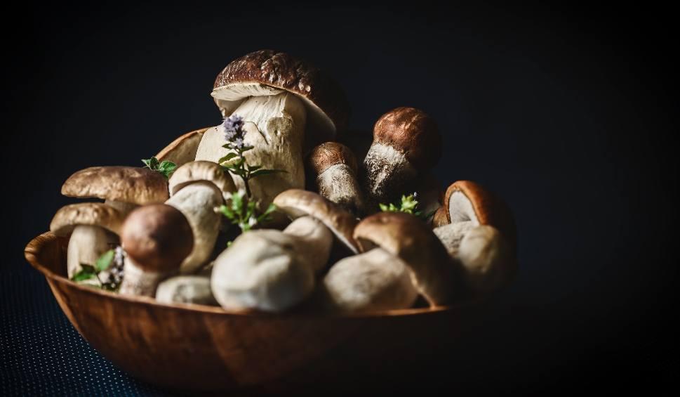 Film do artykułu: Marynowane grzyby. Jak je przygotować? Co potrzebne jest do marynaty. Jak zrobić marynatę do grzybów? Sprawdź przepis na grzyby marynowane