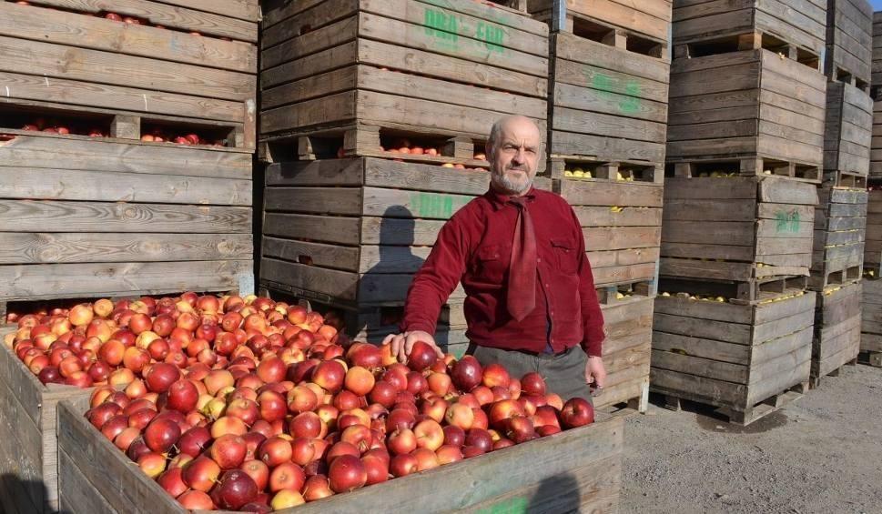Film do artykułu: Skup interwencyjny. Właściciel punktu skupu z Głazowa złożył zawiadomienie o oszustwie przez Eskimos i ministra rolnictwa