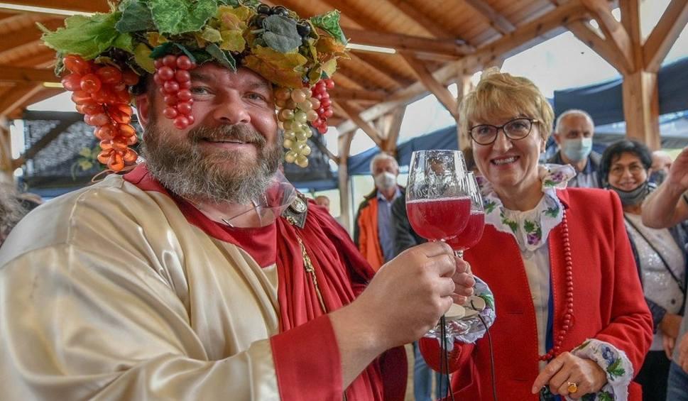 Film do artykułu: Hej, winobranie w Lubuskim Centrum Winiarstwa w Zaborze! Rada Ambasadorów Lubuskiego Winiarstwa coraz liczniejsza