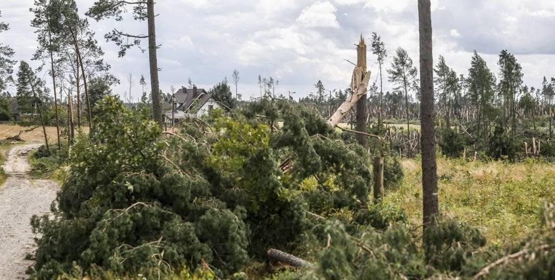 Największy kataklizm od II wojny