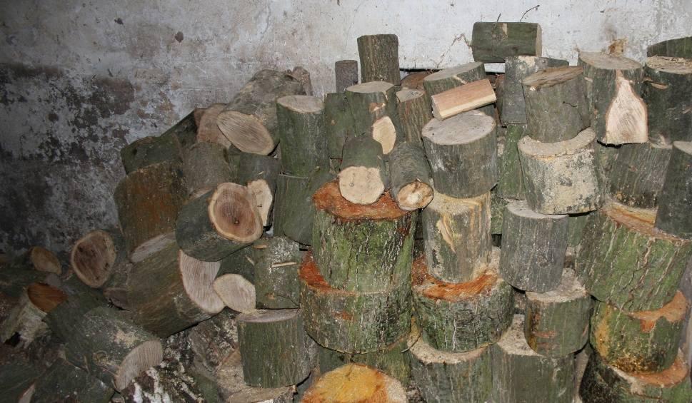 Film do artykułu: Buscy policjanci zatrzymali podejrzewanego o kradzież drewna
