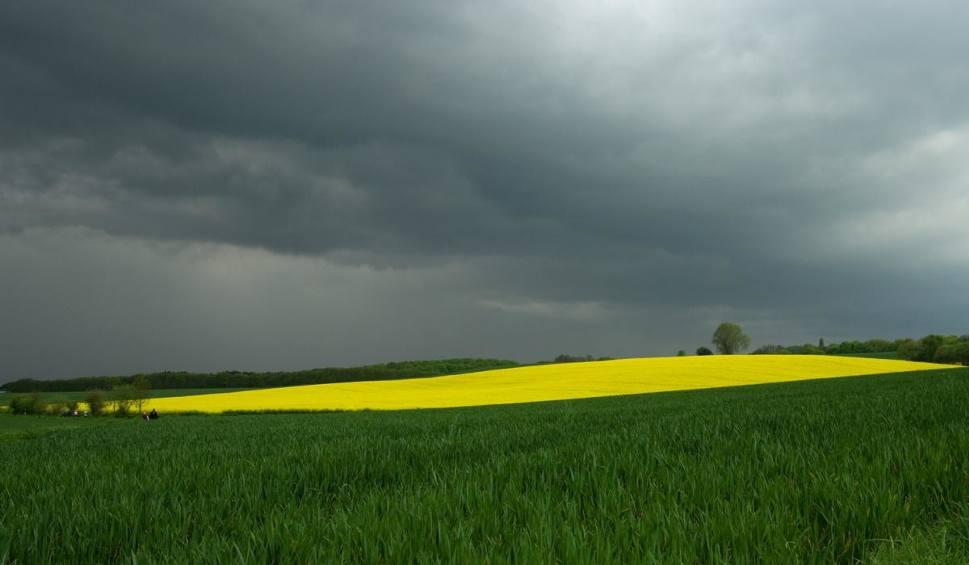 Film do artykułu: Pogoda na czwartek. Będzie ciepło i możliwe burze [WIDEO]