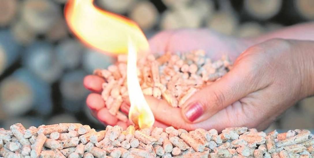 Pellet jest biopaliwem produkowanym na całym świecie z wiórów drewnianych, formowanych w granulki przy pomocy pary lub ekolepiszczy. Ale Polak potrafi...