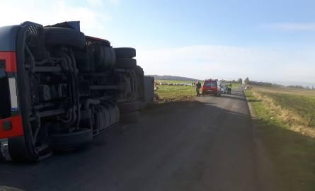 Między Kijaszkowem a Tłukomami przewróciła się ciężarówka przewożąca świnie [ZDJĘCIA]